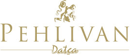 pehlivan-logo